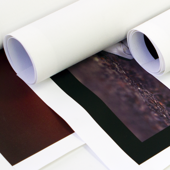 Rolled Canvas Prints 2