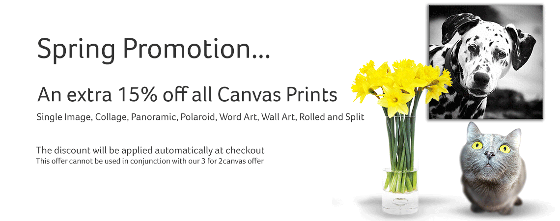 Spring Promotion 15% Off Canvas